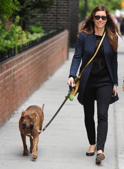Джессика Бил. Джессика прогуливается с Тиной и Бренани по Нью-Йорку: