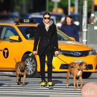 Джессика Бил. Джессика гуляет с собаками в Сохо: