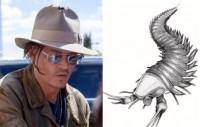 В честь Джонни Деппа назвали ископаемого омара