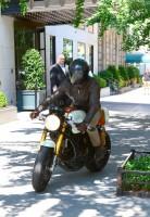 Райан Рейнольдс: на мотоцикле по Нью-Йорку