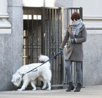 Оливия и Пако на прогулке по улицам Манхэттена