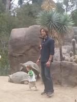 Падалеки в зоопарке Сан Диего,19 июля
