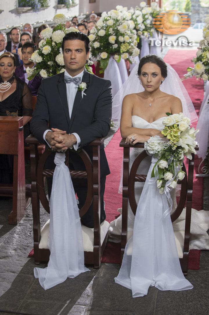 Cурия Вега. Долгождання свадьба!