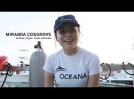 Miranda Cosgrove Swims with Dolphins
