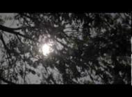 Шон Бин. Трейлер нового фильма с Шоном Бином. Wicked Blood Official Trailer 2013 Abigail Breslin